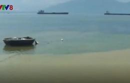Nước đổi màu bất thường ở vùng biển Thừa Thiên - Huế
