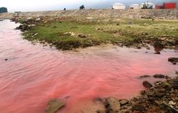Dải nước đỏ xuất hiện ở biển TT-Huế do tảo