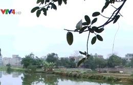 Luật Bảo vệ Môi trường chưa đủ để kiểm soát ô nhiễm nước