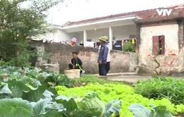 4 năm chưa có nước sạch, lãnh đạo huyện Nam Trực - Nam Định thừa nhận sai lầm