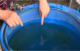 Nguy cơ dịch bệnh vì sử dụng nước giếng ở TP.HCM