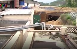 Thanh Hóa: Phát hiện doanh nghiệp chôn ống ngầm xả thải ra sông