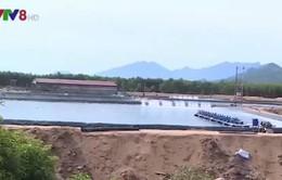 Thừa Thiên Huế yêu cầu báo cáo về vấn đề nuôi tôm trên đất quốc phòng