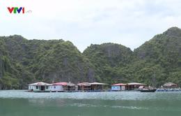 Nuôi trồng thủy sản gắn với du lịch trên vịnh Hạ Long