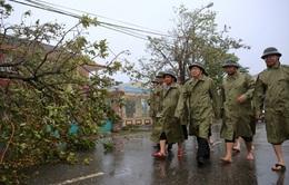 Phó Thủ tướng Trịnh Đình Dũng thị sát công tác khắc phục hậu quả của bão số 10