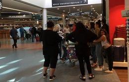 New Zealand: Hàng nghìn hành khách mắc kẹt tại sân bay vì vỡ đường ống dẫn xăng