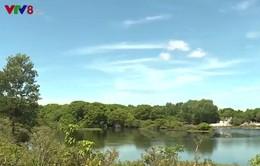 Huế bảo tồn vùng ngập mặn cửa sông Ô Lâu