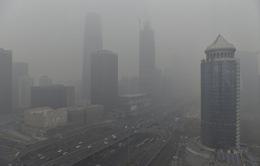 70% doanh nghiệp Trung Quốc vi phạm về môi trường