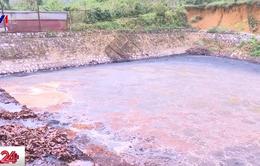 Cơ sở chế biến cà phê gây ô nhiễm nghiêm trọng nguồn nước ở Sơn La