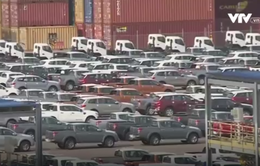Thuế giảm, ô tô ùn ùn nhập qua cảng TP.HCM