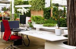 """Không phải kiểu """"đóng hộp"""", đây mới là thiết kế văn phòng phù hợp trong tương lai"""