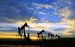 """Ngành dầu khí Anh có thể thiệt hại 500 triệu Bảng/năm vì Brexit """"cứng"""""""