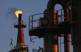 Nhu cầu năng lượng của Trung Quốc sẽ đạt đỉnh vào năm 2040