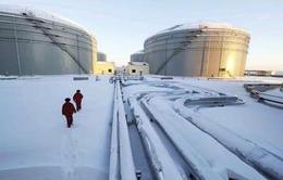 Tìm kiếm nguồn nhiên liệu mới ở Siberia