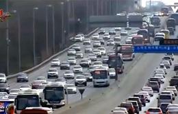Bệnh mất trí nhớ nặng thêm do ô nhiễm không khí