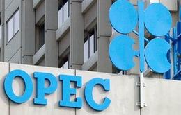 Các nước OPEC ủng hộ việc kéo dài thỏa thuận cắt giảm sản lượng