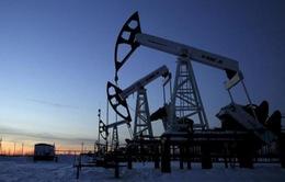 Mức độ tuân thủ thỏa thuận cắt giảm sản lượng của OPEC đạt 95%