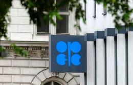 Sản lượng dầu của OPEC tăng lên mức cao nhất từ đầu năm tới nay