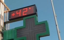 Pháp: Nắng nóng kéo dài, nhiệt độ tại đảo Corsica lên tới 42 độ C