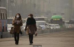 Hàn Quốc: Seoul áp dụng biện pháp khẩn cấp đối phó ô nhiễm không khí