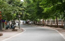 Hà Nội: Hoãn tổ chức phố đi bộ Trịnh Công Sơn đến tháng 10