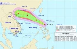 Tổ chức trực ban nghiêm túc 24/24 giờ đối với bão Pakhar