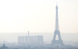 Pháp áp dụng hệ thống dán nhãn đối phó tình trạng khói mù