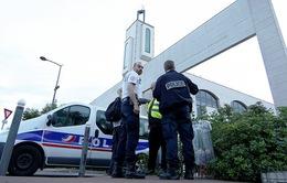 Bắt nghi phạm lái xe đâm vào đám đông ở Pháp