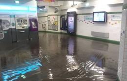 Hệ thống tàu điện ngầm Paris ngập nặng sau mưa lớn