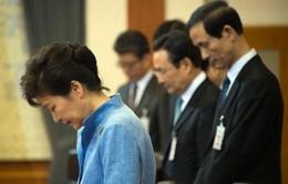 Cựu Tổng thống Hàn Quốc bị bắt giữ - sự kiện quốc tế được quan tâm nhất tuần