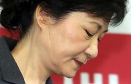 Hàn Quốc ấn định ngày phán quyết với bà Park Geun-hye