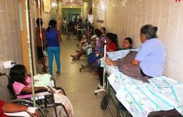 Peru tuyên bố tình trạng khẩn cấp y tế