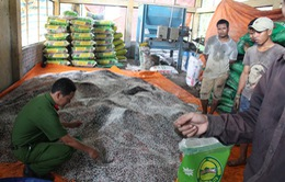 Lâm Đồng: Bắt quả tang một cơ sở sản xuất phân bón giả