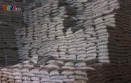 Chấn chỉnh hoạt động cấp phép sản xuất phân bón