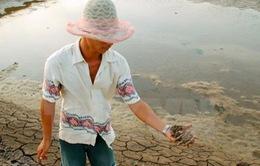Tăng diện tích nuôi tôm trên cát lên 4.500ha vào năm 2020