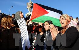 Các nước Arab đáp trả quyết định của Mỹ về Jerusalem ở HĐBA LHQ