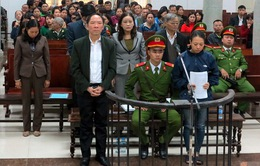 Nguyên Phó Giám đốc Sở NN&PTNT Hà Nội cùng đồng phạm hầu tòa