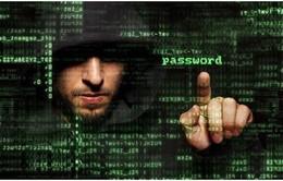 Nhiều cổng thông tin chính phủ Đông Nam Á nhiễm phần mềm độc hại