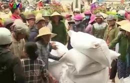 Bình Định cấp gạo cho người dân dịp Tết Nguyên đán