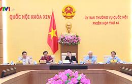 Ủy ban Thường vụ Quốc hội thảo luận Luật Phòng chống tham nhũng