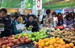Giá cả thị trường chỉ tăng nhẹ trong tháng Tết Nguyên đán
