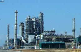 Nhà máy lọc dầu Dung Quất chuẩn bị cổ phần hóa
