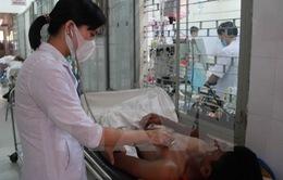 16 người ở Buôn Ma Thuột bị ngộ độc do thực phẩm nhiễm vi khuẩn E.Coli