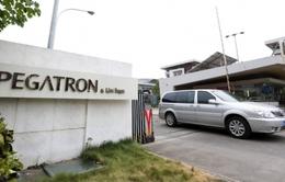 Hãng lắp ráp Pegatron chuẩn bị mở rộng sản xuất iPhone tại Mỹ?