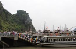 Quảng Ninh: Doanh thu vận tải ước đạt trên 4.700 tỷ đồng trong 5 tháng đầu năm