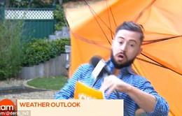 Kinh ngạc MC thời tiết bị… gió cuốn đi