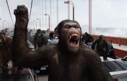 Đại chiến hành tinh khỉ - Bom tấn cảnh tỉnh con người về nguy cơ tận diệt