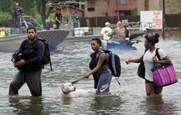 Mỹ: Hơn 450.000 người tại Texas cần hỗ trợ sau bão