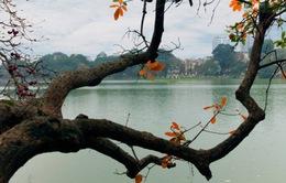 Thời tiết ngày 25/10: Hà Nội hửng nắng về chiều, trời se lạnh