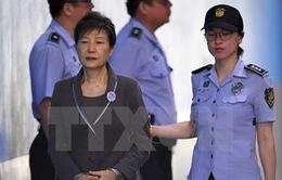 Hàn Quốc nối lại phiên xử cựu Tổng thống Park Geun-hye vắng mặt